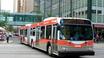'An amazing group of people': Transit drivers coping during pandemic