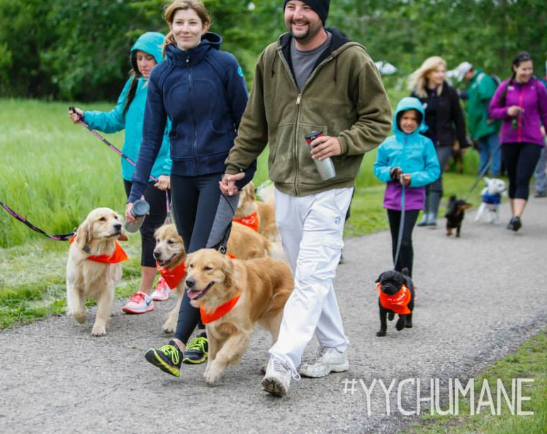 Calgary Humane Dog Jog