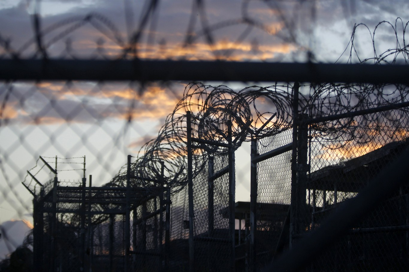 Guantanamo detainees sent to United Arab Emirates in largest single transfer