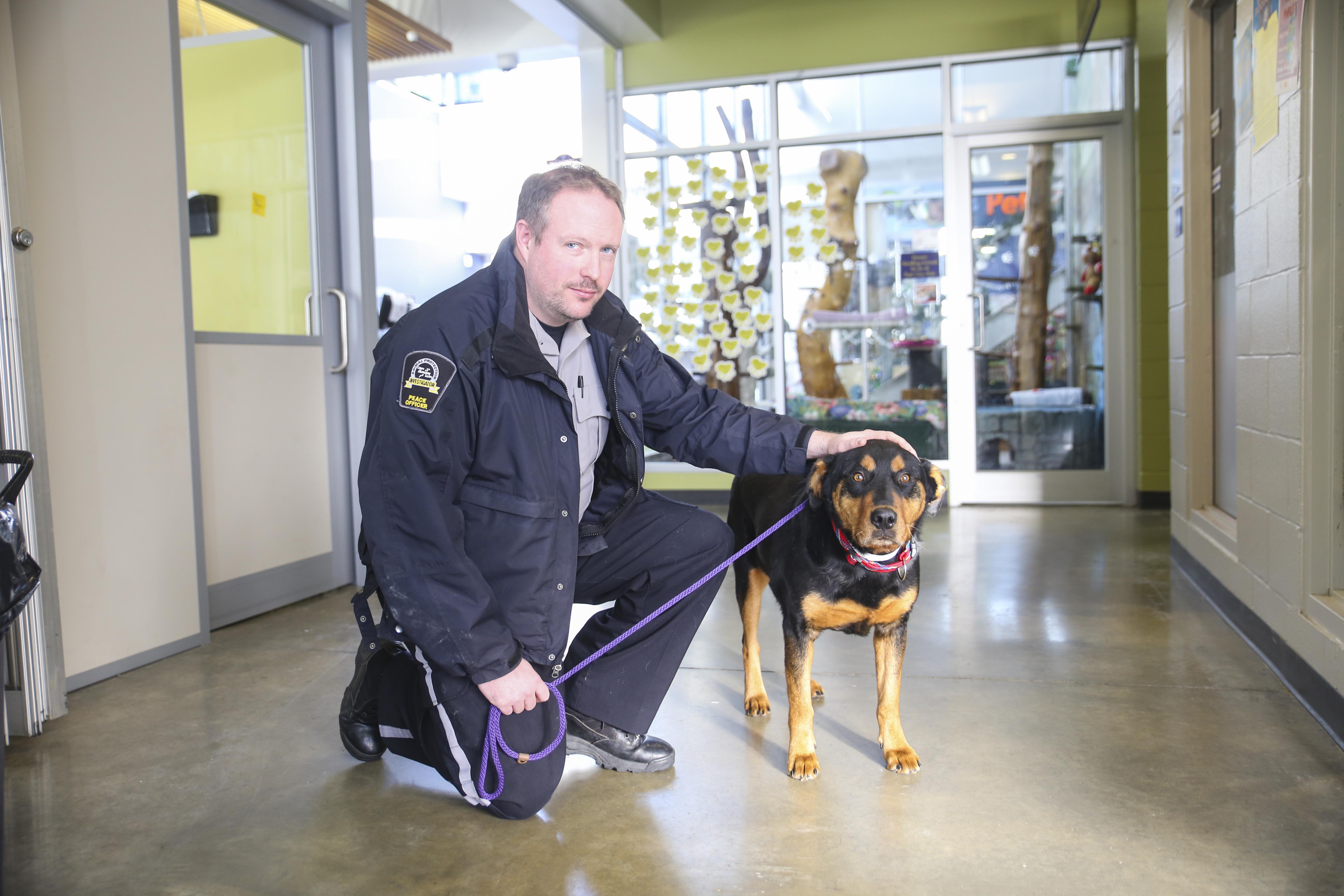 Calgary Humane Society 'run off its feet' as animals are