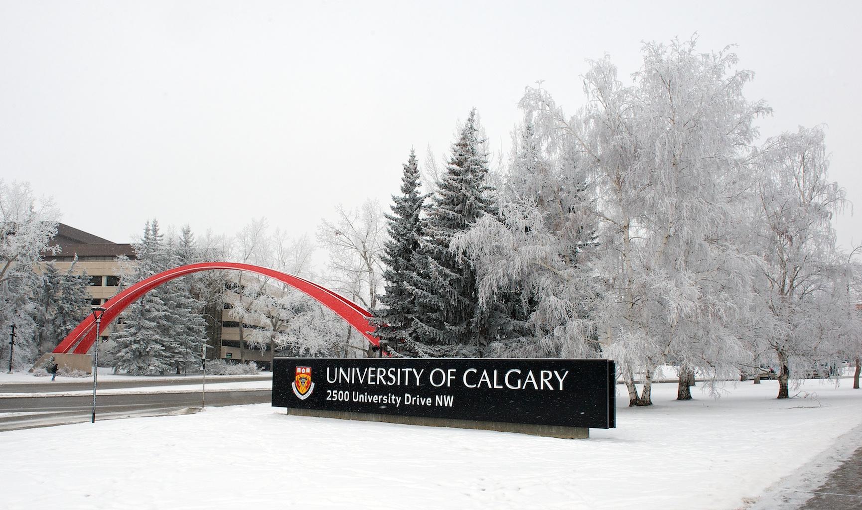 University of calgary strategy