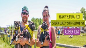 Calgary Humane Society Dog Jog @ South Glenmore Park  | Calgary | Alberta | Canada