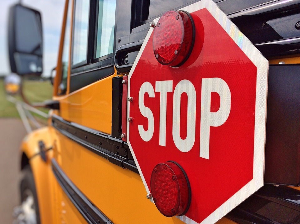 Alberta school bus driver charged with drunk driving after bus hits tree