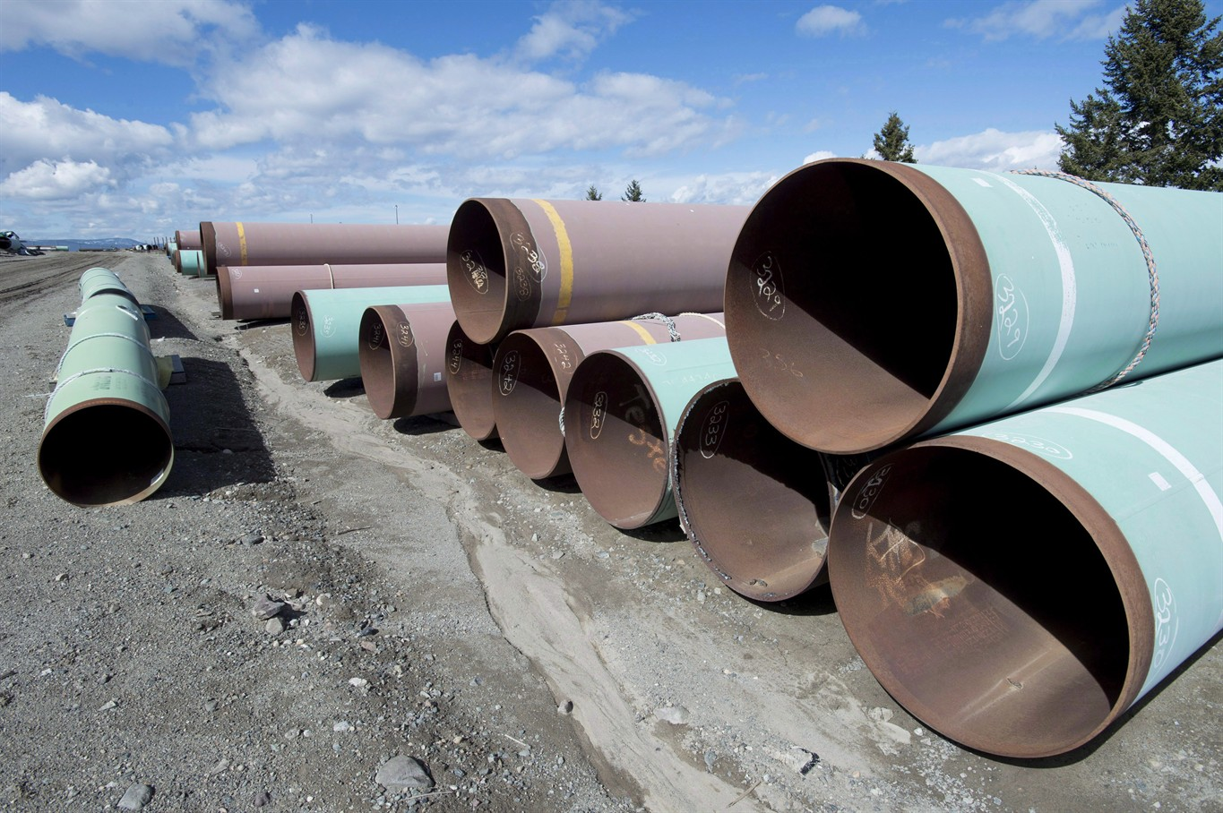 Workers and companies left in limbo after Trans Mountain