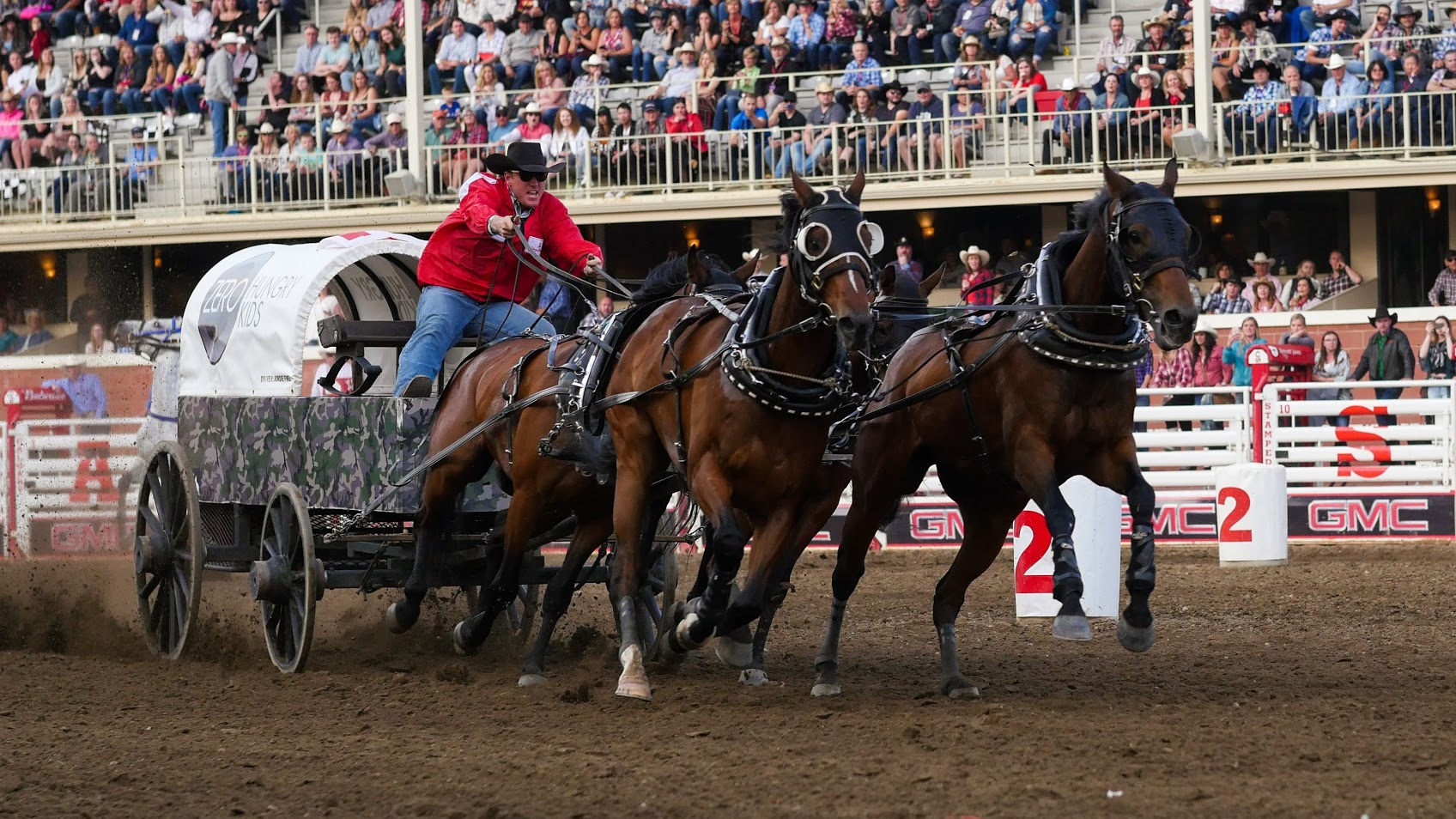 Another Horse Dies After Chuckwagon Race At Calgary