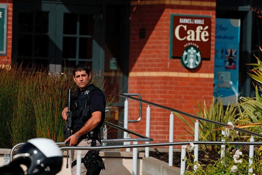 Police reviewing video to identify California mall shooters