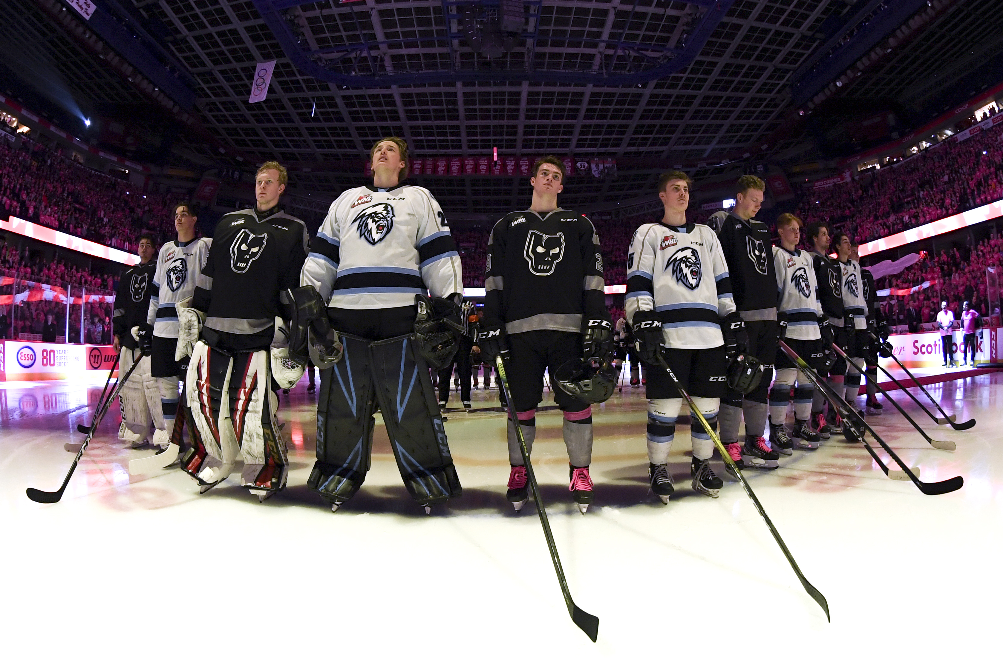 Hitmen Beat Visiting Winnipeg With Thousands Of Students In Stands