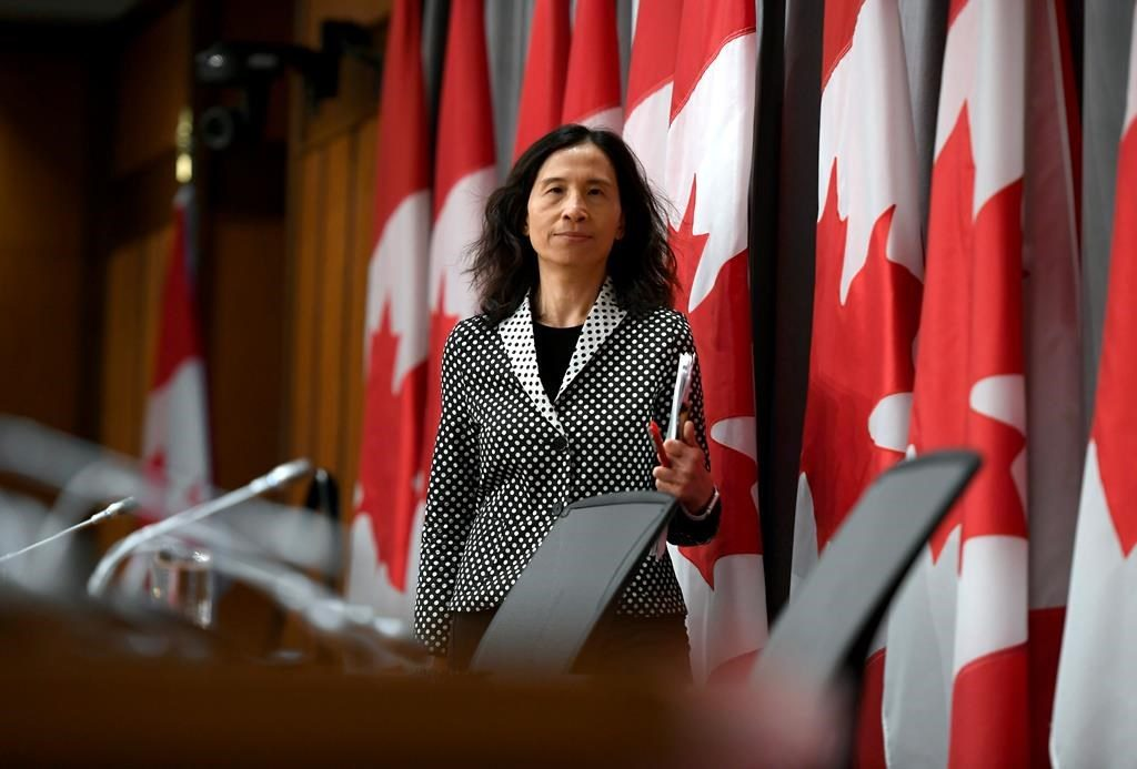 Top public health officer says Canada at critical juncture in COVID-19 battle