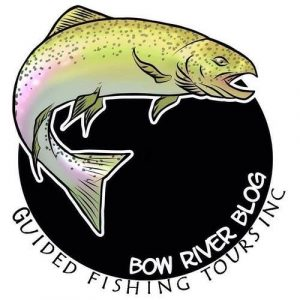 Bow River Blog Guided Fishing Tours Inc